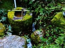 Zen temple 016