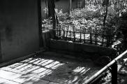 Zen temple 006