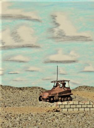 desert landscape 8-19-11 047 dk ant