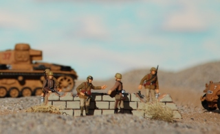 desert landscape 8-19-11 075
