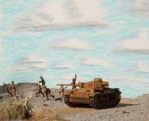 desert landscape 8-19-11 095