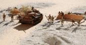 desert landscape 8-19-11 139