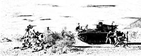 desert landscape 8-19-11 147 L1