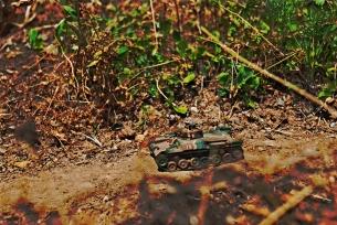 jungle road_009 dark