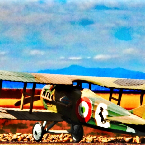 WWI Airfield_030