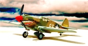 P-40B North Africa_004