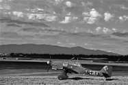Stuka Airfield_003 bw