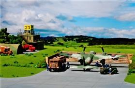 New Airfield nikon 8-16 033