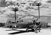 Tropical Airfield_American_003