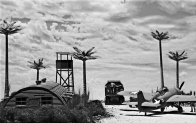 Tropical Airfield_American_019