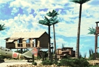 Tropical Airfield_Japanese_044