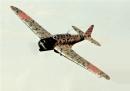 in-flight shots_01 031 a
