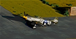 P-51D Mustang_001