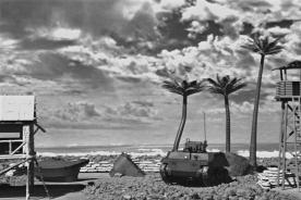 Japanese Beach 030
